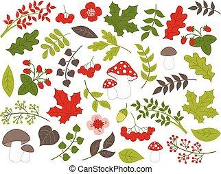 vector, conjunto, verano, plantas, vario, bosque