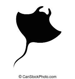 vector, cramp-fish, siluetas, aislado, negro, blanco, illus