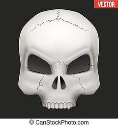 Vector Creative Human skull.