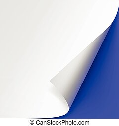 Vector Curled corner of White paper with shadow Mock up Close up Isolated on Blue Background