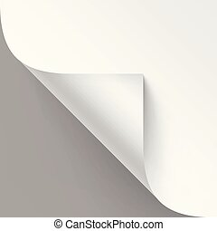 Vector Curled corner of White paper with shadow Mock up Close up Isolated on Gray Background