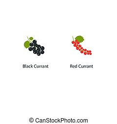 Vector currant isolated on white background in a flat style. Illustration of fresh berries with a green leaf. Red and black currants.