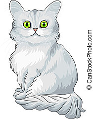 Vector fluffy blue Asian Semi-Longhair cat (Tiffany) with green eyes sitting