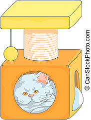 vector cute british cat in the cat house with scratching posts