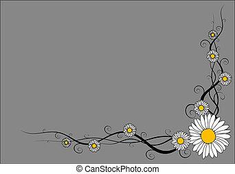 Vector daisy frame on gray background