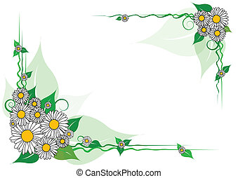 Vector daisy frame on a white background
