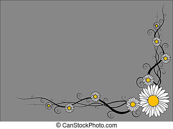Vector daisy frame on gray background