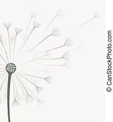 Vector dandelion flower
