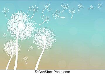 dandelion - vector dandelion on a wind loses the integrity