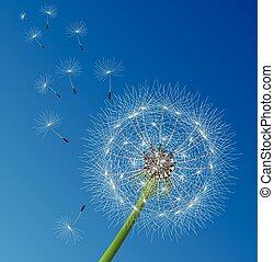 vector dandelion seeds blown in the wind - vector...