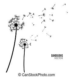Vector Dandelion silhouette. Flying dandelion buds black on white.