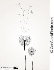 vector dandelion  - vector dandelion