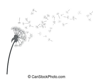 Vector Dandelion - Vector Illustration of Dandelion
