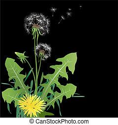 dandelions in wind - vector dandelions in wind on black ...