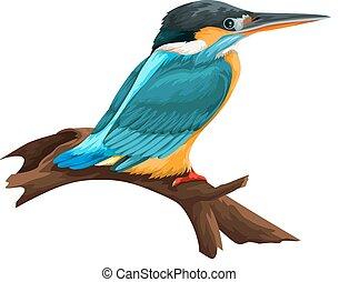 vector, de, pájaro, se posar, en, branch.