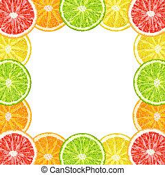 Vector decorative frame from citrus slices - lime, grapefruit, lemon, orange