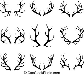 Vector deer antlers isolated on white. Set of different antlers large, branched and acute