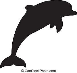 vector, delfín