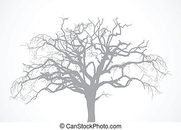 vector, descubierto, viejo, seco, árbol muerto, silueta, sin, hoja, -, roble, cuervo