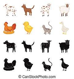 Vector design of breeding and kitchen logo. Collection of breeding and organic vector icon for stock.