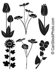 Vector design of flowers 4