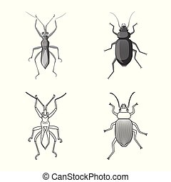 Vector design of insect and fly icon. Collection of insect and element stock symbol for web.