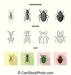 Vector design of insect and fly symbol. Set of insect and element vector icon for stock.