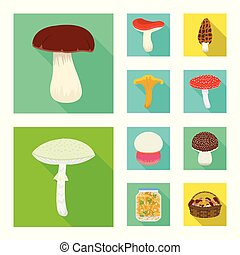 Vector design of raw and summer sign. Collection of raw and ingredient vector icon for stock.