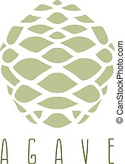 vector design template of the agave root