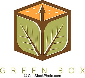 vector design template of the box with leaves