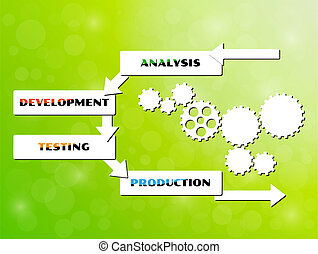 vector development cycle