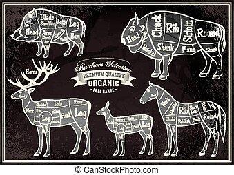 vector diagram cut carcasses boar, bison, deer, horse - ...