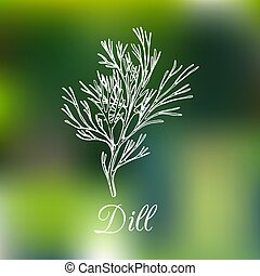 Vector dill illustration on blurred background. Hand drawn sketch of spice plant. Botanical drawing of aromatic herb.