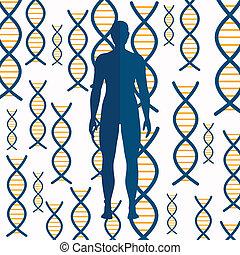 Vector DNA Background