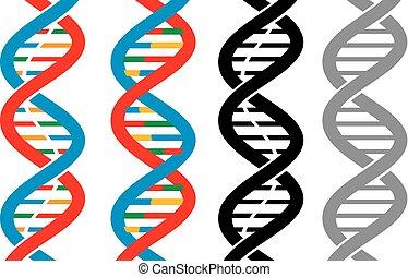 vector DNA strand icons (scheme deoxyribonucleic acid)