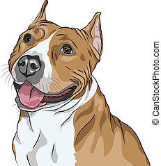 sketch, closeup portraite of the dog American Staffordshire Terrier breed smiles