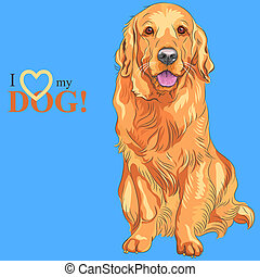 vector dog breed Golden Retriever - smiling red gun dog...