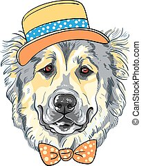 vector dog Caucasian Shepherd Dog breed in yellow hat and orange bow tie