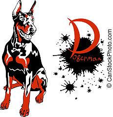 vector dog Doberman Pinscher breed