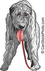 vector dog Irish Wolfhound breed - angry large hunting dog...