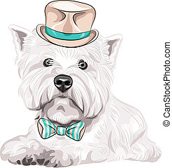 color sketch closeup portrait serious dog West Highland White Terrier breed in a beige silk hat and bow tie