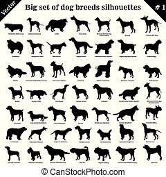 Vector dogs silhouettes 1 - Big set of 49 different dogs, ...
