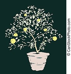 Vector drawing of lemon tree in flower pot