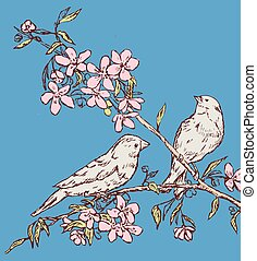 Vector drawing of two nightingales sitting on blossom cherry branch on spring day