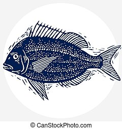 Vector drawn freshwater fish silhouette, natural graphic...