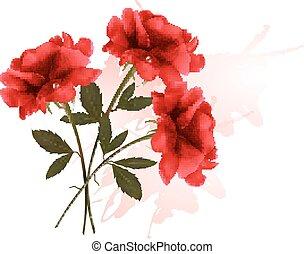 vector., drie, roses., achtergrond, vakantie, rood