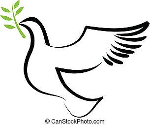 vector, duif, -, 2