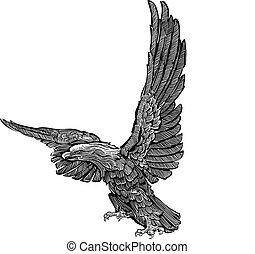 Vector - eagle engraving - Black and white illustration
