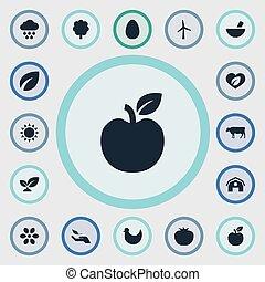 vector, ecologie, vegetariër, eenvoudig, pasen, bos, illustratie, milieu, synonyms, set, icons., summer., anderen, communie, turbine