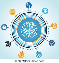 vector, educación, concepto, -, cerebro, y, ciencia, iconos